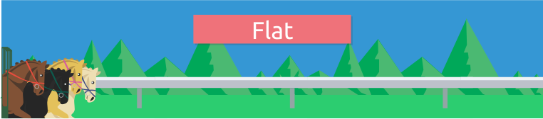 Corridas de cavalo  Flat