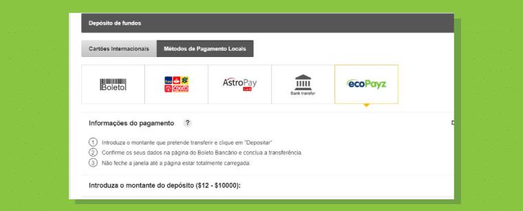 """Clique na logo da """"Ecopayz"""""""